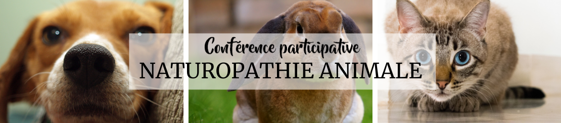 conference-naturopathie-animale