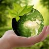 Comment aligner votre entreprise à vos valeurs écologiques