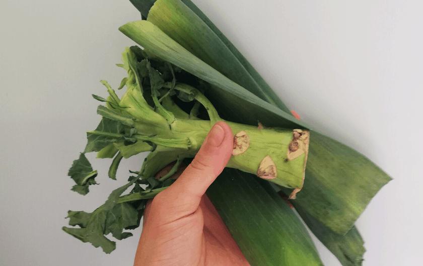 """Comment cuisiner les """"déchets"""" de légumes – Astuces et recettes"""