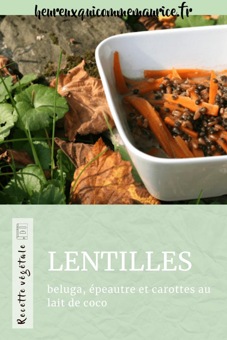 recette lentilles belga vegan
