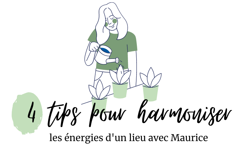4 tips pour harmoniser un lieu avec Maurice