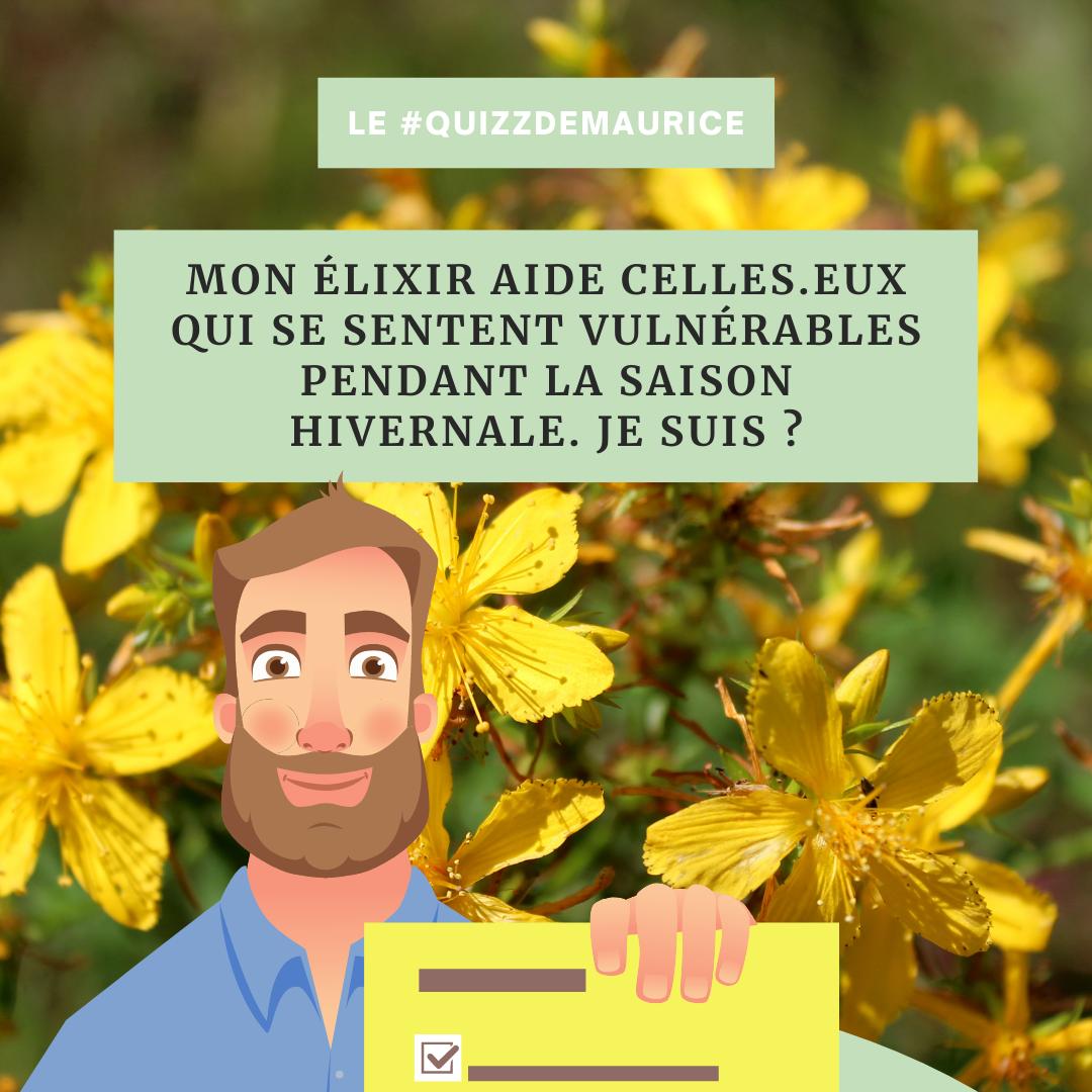 Quizz-de-Maurice-naturopathie-holsitique (3)