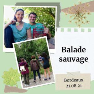 Balade plantes sauvages Bordeaux